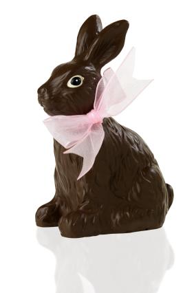 Choko bunny